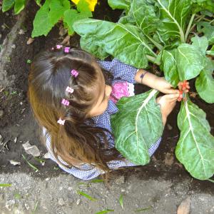 Jardín infantil, sala cuna, educación sustentable, ñuñoa